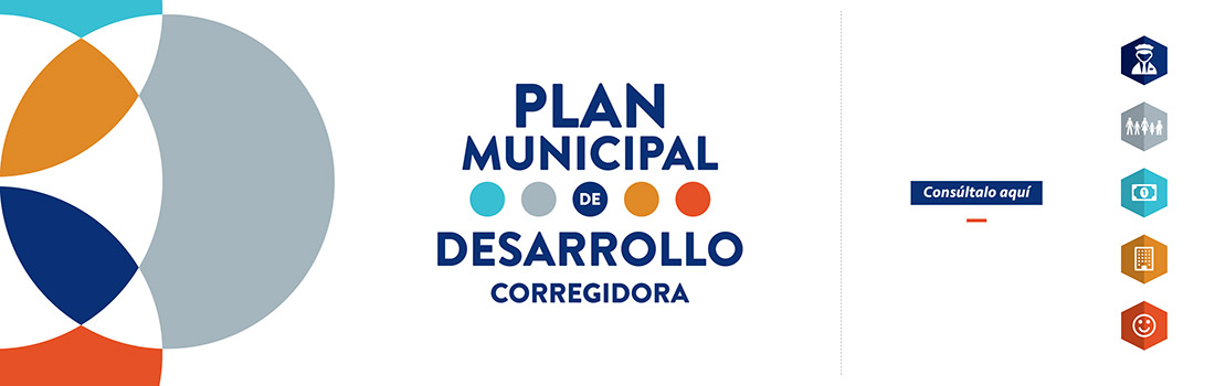 CARRUSEL-PLAN-MUNICIPAL-2016