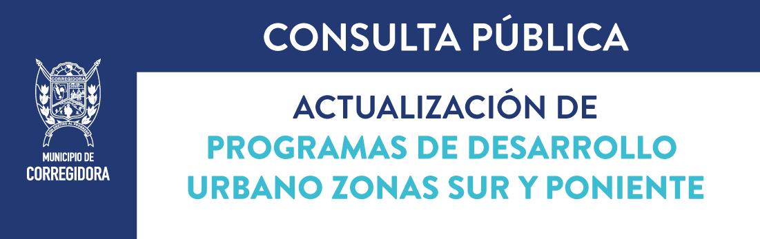 Consulta-Pública