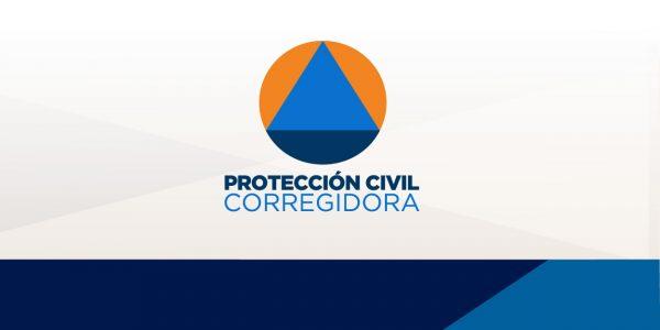 logoweb